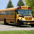 Yellow school bus — Stock Photo #34784297