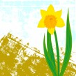 Vector card with one single daffodil — Stock Vector