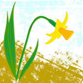 Vector card with one daffodil — Stock Vector