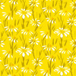 Vector pattern with hand drawn daisy flowers — Stock Vector #41515253