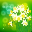 Vector card with white daffodils on light bokeh — Stock Vector