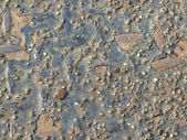 Old corroded metal background — Stock Photo
