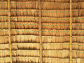 Close up straw background. Texture of thatch roof — Stock Photo