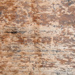 Texture wood — Stock Photo #37509449