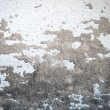 Stock Photo: Cement texture