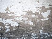 Cement texture — Stock Photo