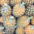 Stock Photo: Honey Pineapples