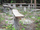 Bench in the forest  — Stock Photo