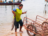 CHUMPHON, THAILAND - SEPTEMBER 22 : Unidentified fishermen are carry fish to keep the cart on September 22, 2012 at Chumphon Thailand — Stock Photo