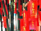 Feuilles rouges de fortune pour le chinois — Photo