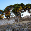 Stock Photo: RomAmpitheater Ruins in Ancient Town of Pula, Istria, Cro