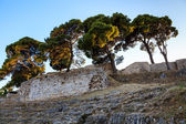 Roman Ampitheater Ruins in the Ancient Town of Pula, Istria, Cro — Stock Photo