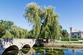 Paysage pittoresque, église, pont, rivière et saule, solin, — Photo