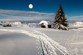 Fullmåne över liten hydda och fir tree på utmaning — Stockfoto