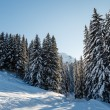 Ski Slope and Beautiful Landscape in Megeve, French Alps, Franc — Stock Photo #17370203