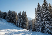 Ski Slope and Beautiful Landscape in Megeve, French Alps, Franc — Stock Photo