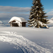 Stock Photo: Small Hut and Fir Tree on the Top of the Mountain in French Alps