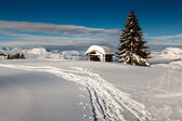 Fransız alps küçük kulübe ve köknar ağacı dağın tepesinde — Stok fotoğraf