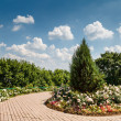 Kolomenskoye Outdoor Museum and Park near Moscow, Russia — Stock Photo