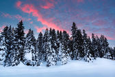 Beautiful Sunrise near Madonna di Campiglio Ski Resort, Italian — Photo
