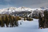 Skipiste in de buurt van madonna di campiglio skiresort, italiaanse alpen, het — Stockfoto