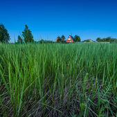 Red Country House and Deep Green Grass at Twilight, Moscow Regio — Stock Photo