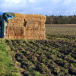 Straw bales under a tarpaulin. — Stock fotografie