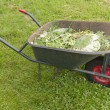 A wheelbarrow with plant remains in the organic vegetable garden. — Stock Photo