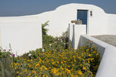 Garden en house in Thira. — Stock Photo