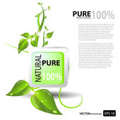 Pure natural — Stock Vector