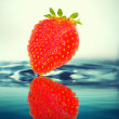 Stock Photo: Strawberry in water