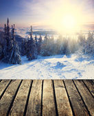 Winter background — Stock Photo