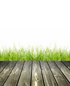 Grass with green bokeh — Stock Photo