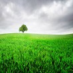 Green hills — Stock Photo #45870263