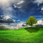 Green hills — Stock Photo #45870455