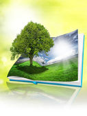 Eco book — Stock Photo