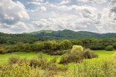 A scenic landscape in Bieszczady — Foto Stock