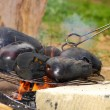Stock Photo: Eggplants on campfire