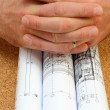 Stock Photo: Rolled blueprints