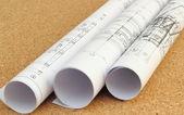 Rolled blueprints — Stock Photo