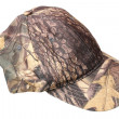 Stock Photo: Hunting cap