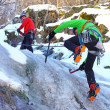 Team of mountaineers heading to the summit — ストック写真