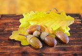 Acorns in autumn setting — Stock Photo