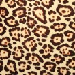Pattern of leopard fur — Stock Photo