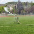Sprinkler in the park — Stock Photo