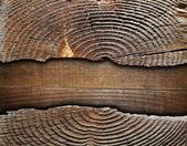Craquage moignon épinette sur contreplaqué — Photo