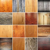 Collection of wooden textures for your design — Stock fotografie