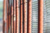 Perspektif görünümü paslı metal çit — Stok fotoğraf