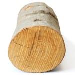 Piece of firewood on white — Stock Photo #45458193