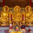 Buddhist Statues in Chinese Temple Thailand — Stock Photo #41258831